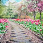 Piękny oraz zadbany ogród to zasługa wielu godzin spędzonych  w jego zaciszu w trakcie pielegnacji.